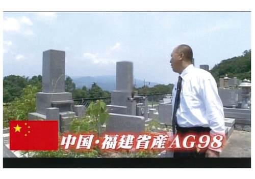 本日、8/12(日)に日本テレビ「ここ掘れ!ワンワン」に出演!