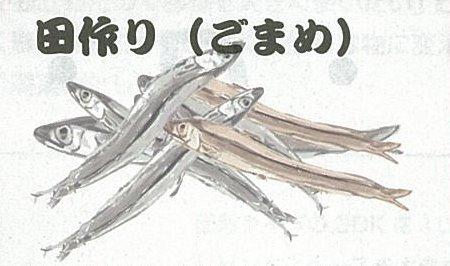 田作り(ごまめ).jpg