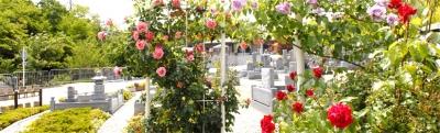 4.墓地の種類と場所で選ぶ【その4】民営墓地