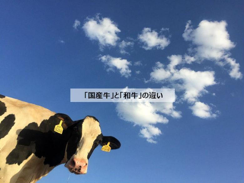 「国産牛」と「和牛」の違い