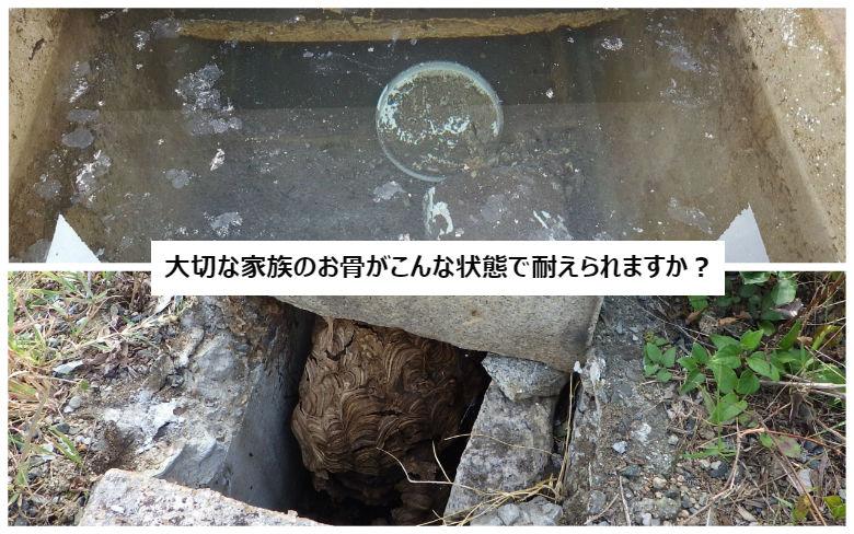 お墓の中は水びたし・ハチの巣