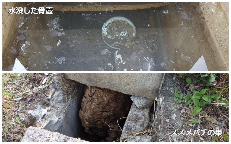 カロート内に水没した骨壺とスズメバチの巣