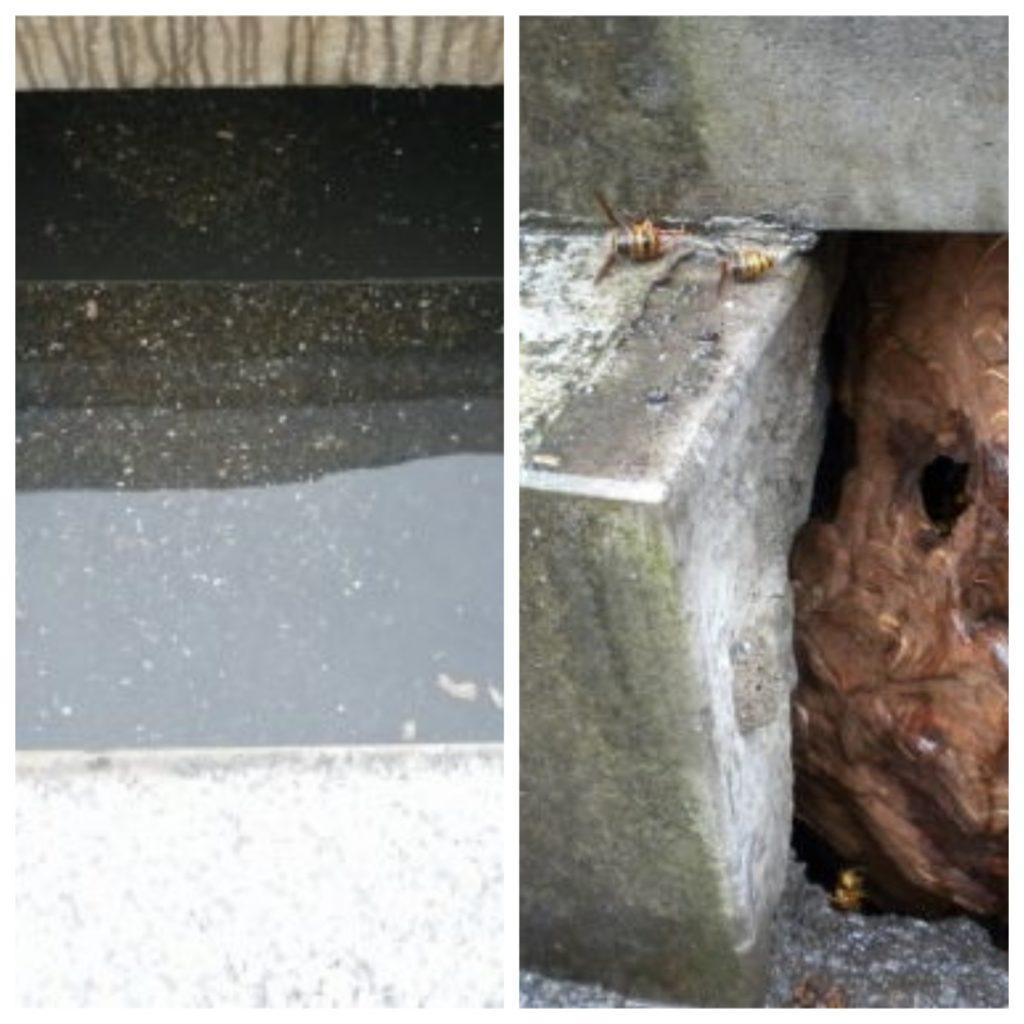 全国のほとんどの地域のお墓は水が入ってしまう構造