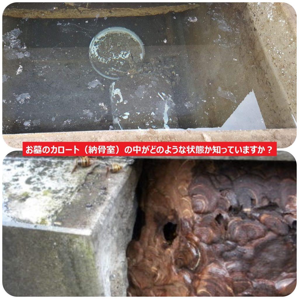 お墓のカロート(納骨室)の中がどのような状態か知っていますか?