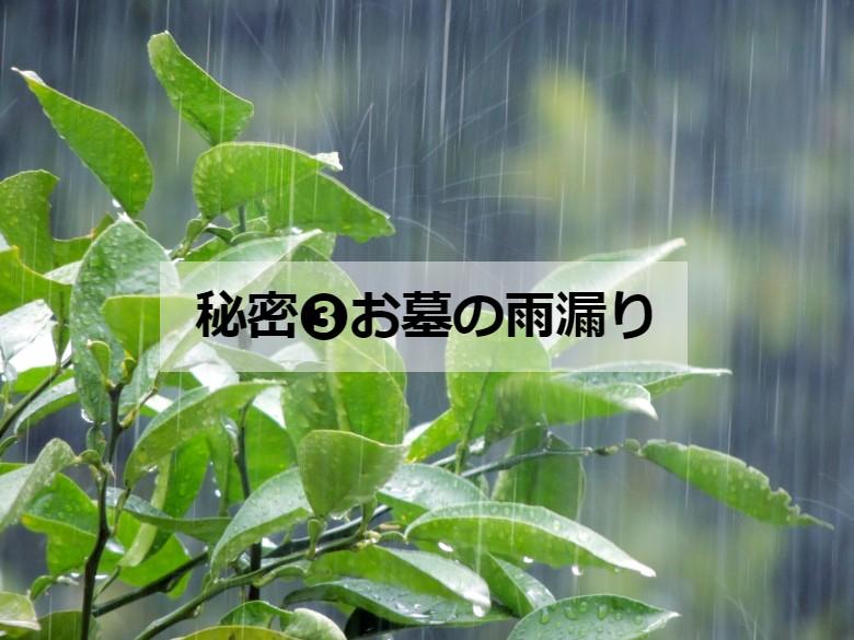 秘密③お墓の雨漏り