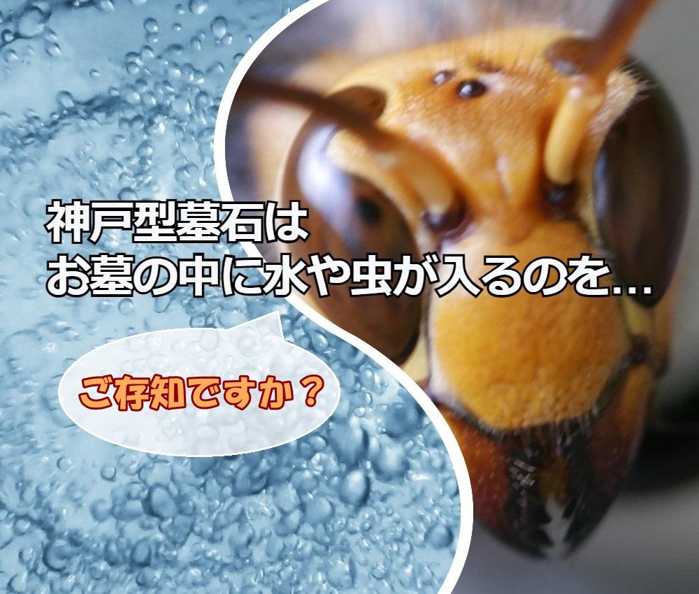 神戸型墓石はお墓の中に水や虫が入るのをご存知ですか?