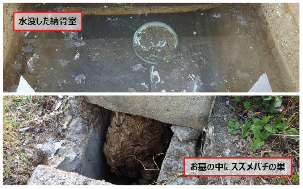 納骨室の雨漏りとスズメバチの巣
