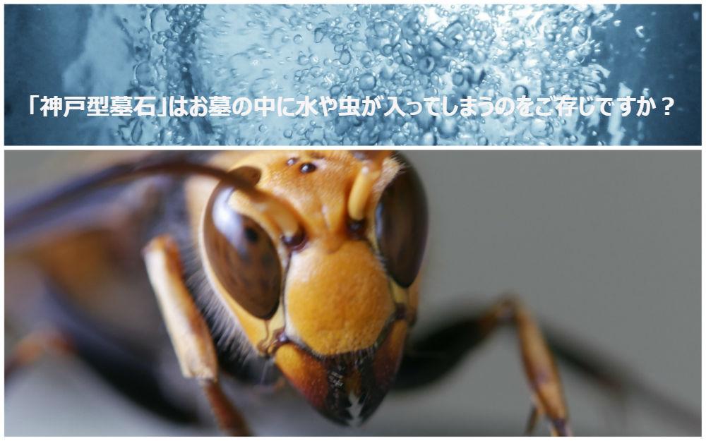 「神戸型墓石」はお墓の中に水や虫が入ってしまうのをご存じですか?