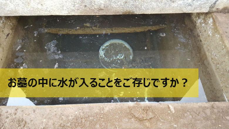 お墓の中に水や虫が入ることをご存じですか?